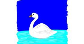 Swan drawing by Laura96