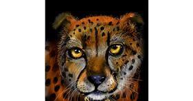 Cheetah drawing by Leah