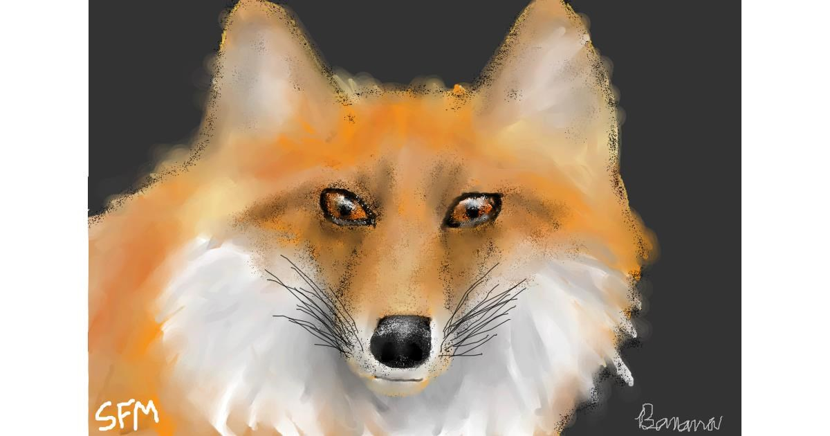 Fox drawing by Banana