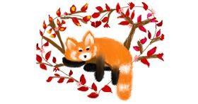 Red Panda drawing by Mitzi