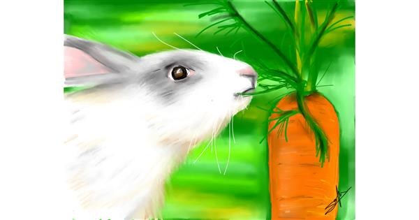 carrot drawing by Sophie_draw24