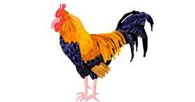 Chicken drawing by Cherri