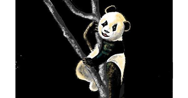 Panda drawing by GJP