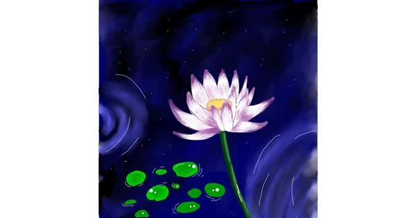 Water lily drawing by Batman