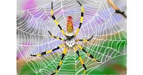 Spider drawing by Abbie