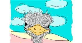 Ostrich drawing by Jennifreis