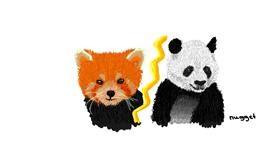 Panda drawing by Nugget