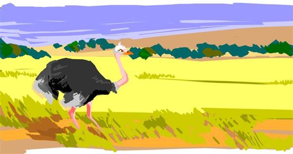 Ostrich drawing by seaturt