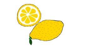 Lemon drawing by Lilli