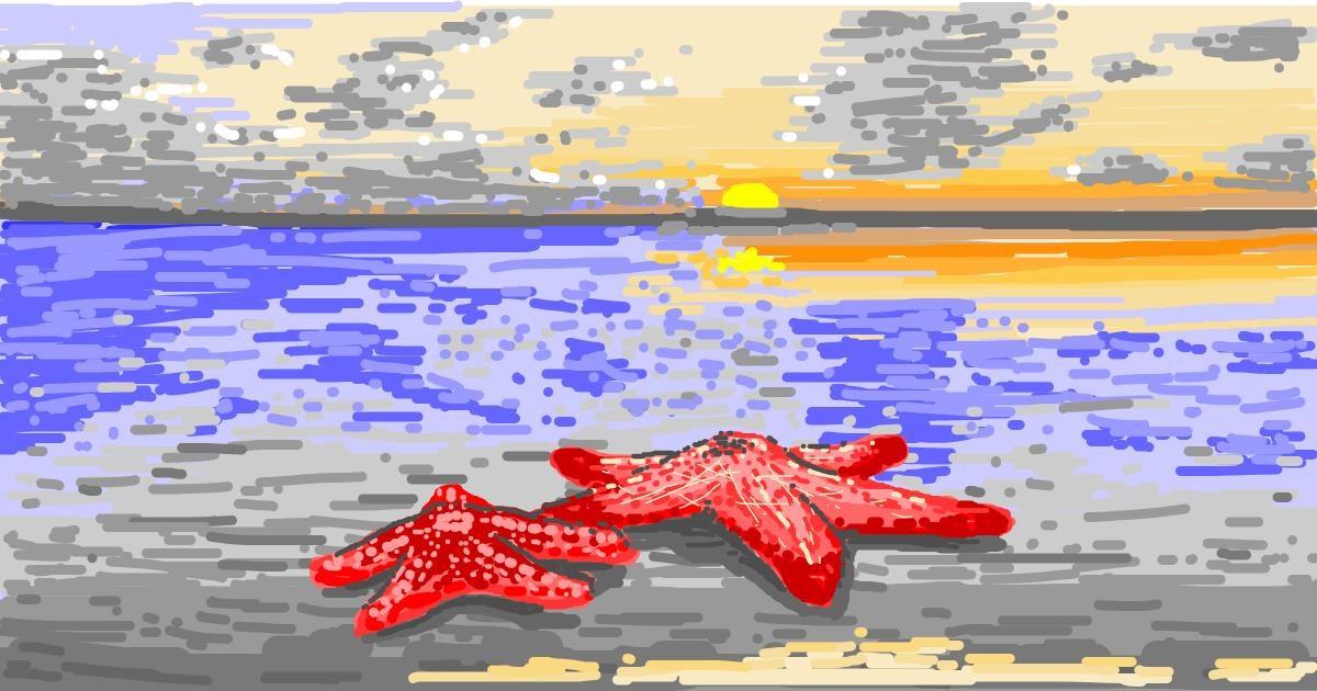 Starfish drawing by Mochi