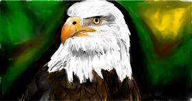 Drawing of Eagle by Soaring Sunshine
