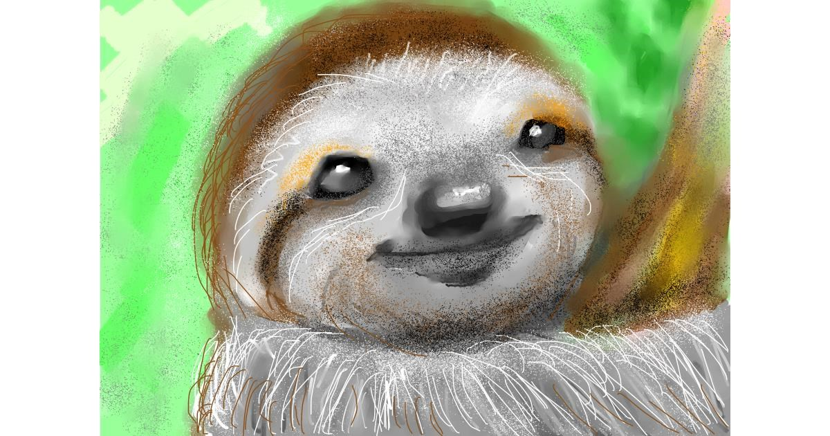 Sloth drawing by 🌈SunShine🐴🌻