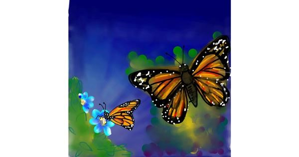 Butterfly drawing by Naaz