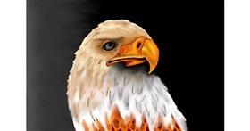 Eagle drawing by Lollipop🍭