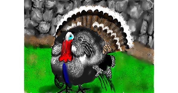 Turkey drawing by SAM 🙄AKA Margaret