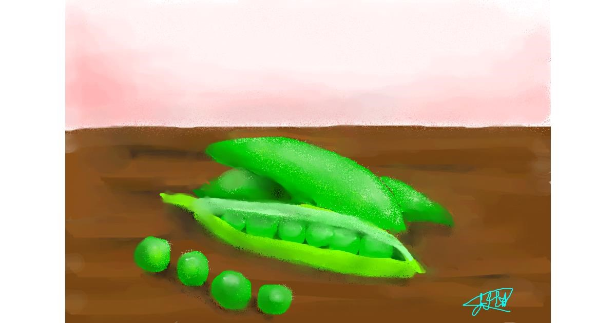 Peas drawing by Abbie