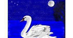 Swan drawing by Klau🌻