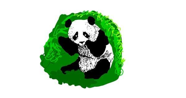 Panda drawing by Princess Ella