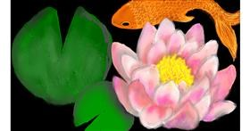 Drawing of Water lily by SAM AKA MARGARET 🙄
