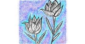 Tulips drawing by Kat