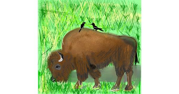 Bison drawing by Gzell