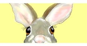 Rabbit drawing by Debidolittle
