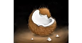 Coconut drawing by Mitzi