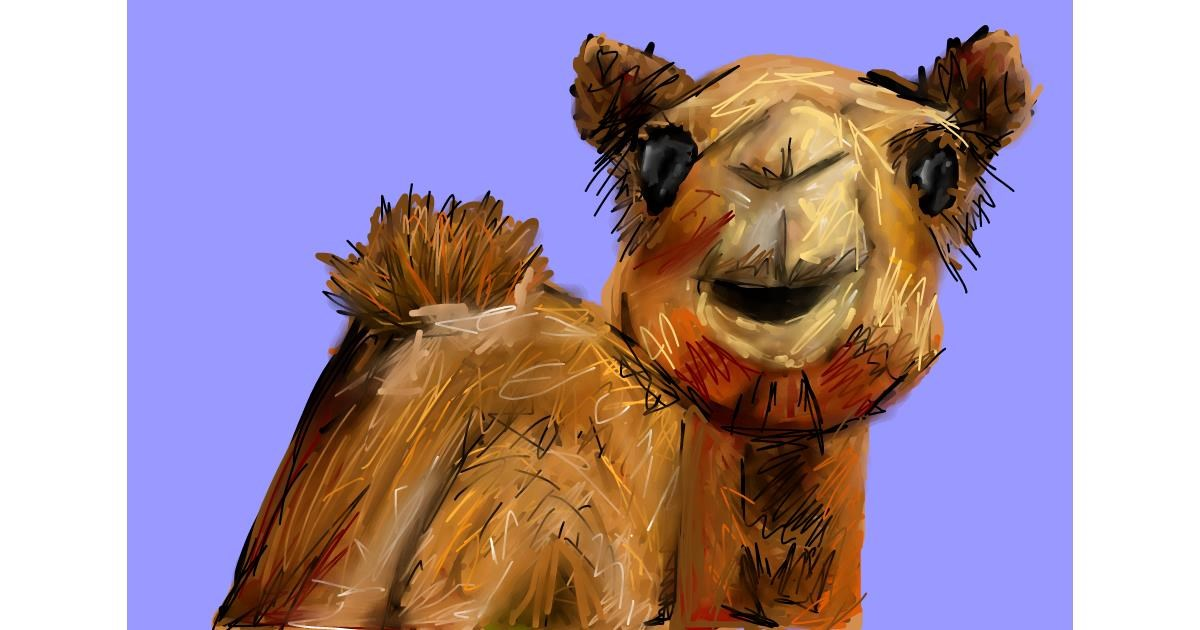 Drawing of Camel by Soaring Sunshine