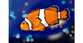 Drawing of Clownfish by RadiouChka