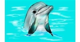Dolphin drawing by Tim