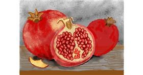 Pomegranate drawing by SAM 🙄