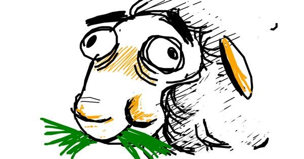 Sheep drawing by Derp