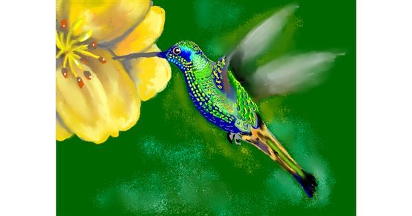 Hummingbird drawing by SAM 🙄AKA Margaret