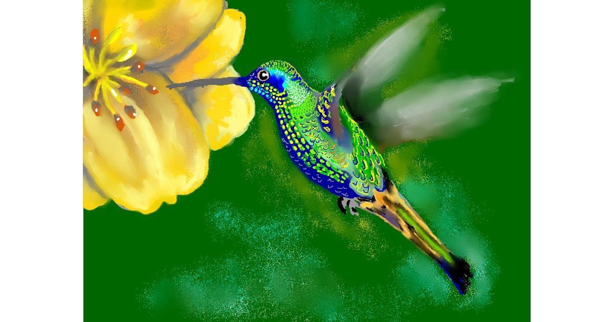 Hummingbird drawing by SAM 🙄