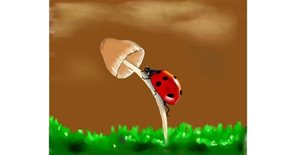 Ladybug drawing by Cec