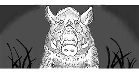 Drawing of Wild boar by The Eye