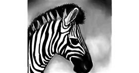 Zebra drawing by Emit