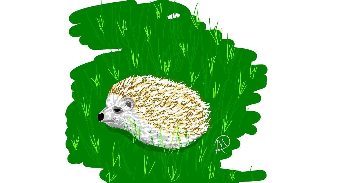 Hedgehog drawing by Geo-Pebbles