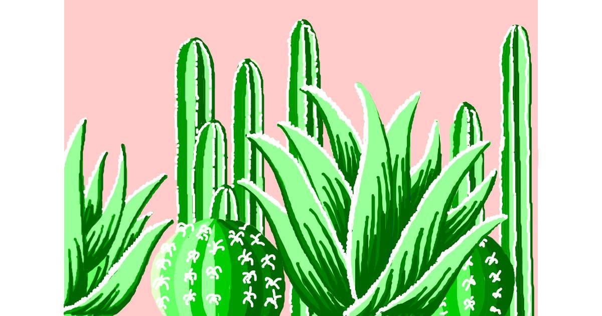 Cactus drawing by Swkieee