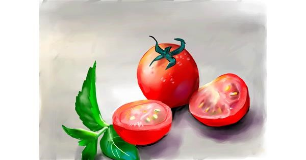 Tomato drawing by Rose rocket
