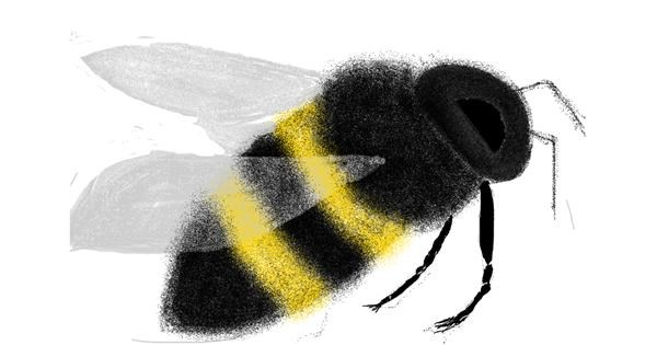 Bee drawing by Ewer