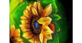 Sunflower drawing by Swastikaa