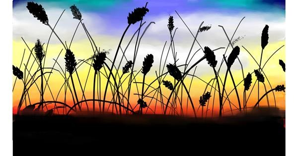 Wheat drawing by Percabeth Everlark
