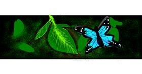 Butterfly drawing by Redd_Pandaii