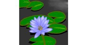 Water lily drawing by DivyaJose
