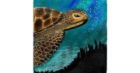 Drawing of Sea turtle by Yasmeen