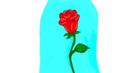 Rose drawing by Alexis