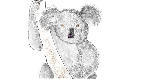 Koala drawing by dédé