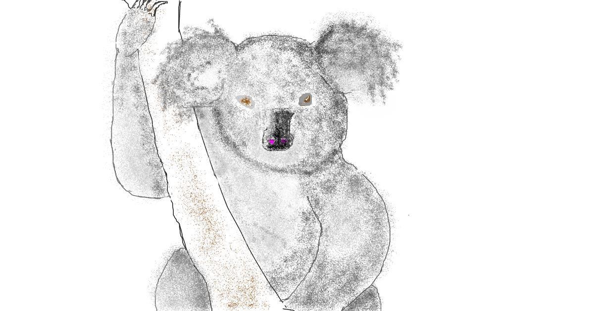 Drawing of Koala by dédé
