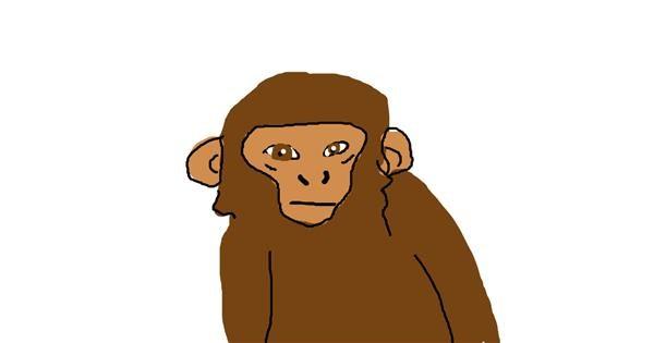 Monkey drawing by lol